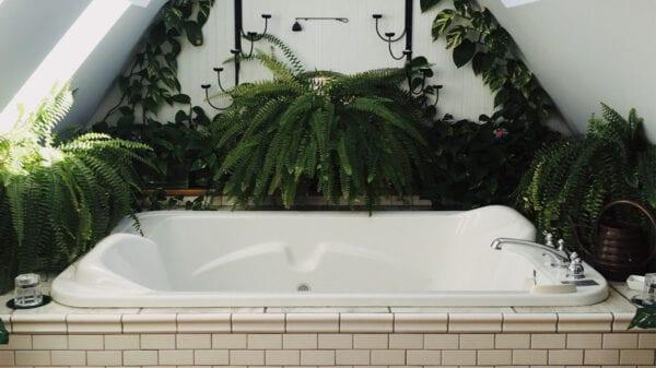 Badezimmer mit Pflanzen