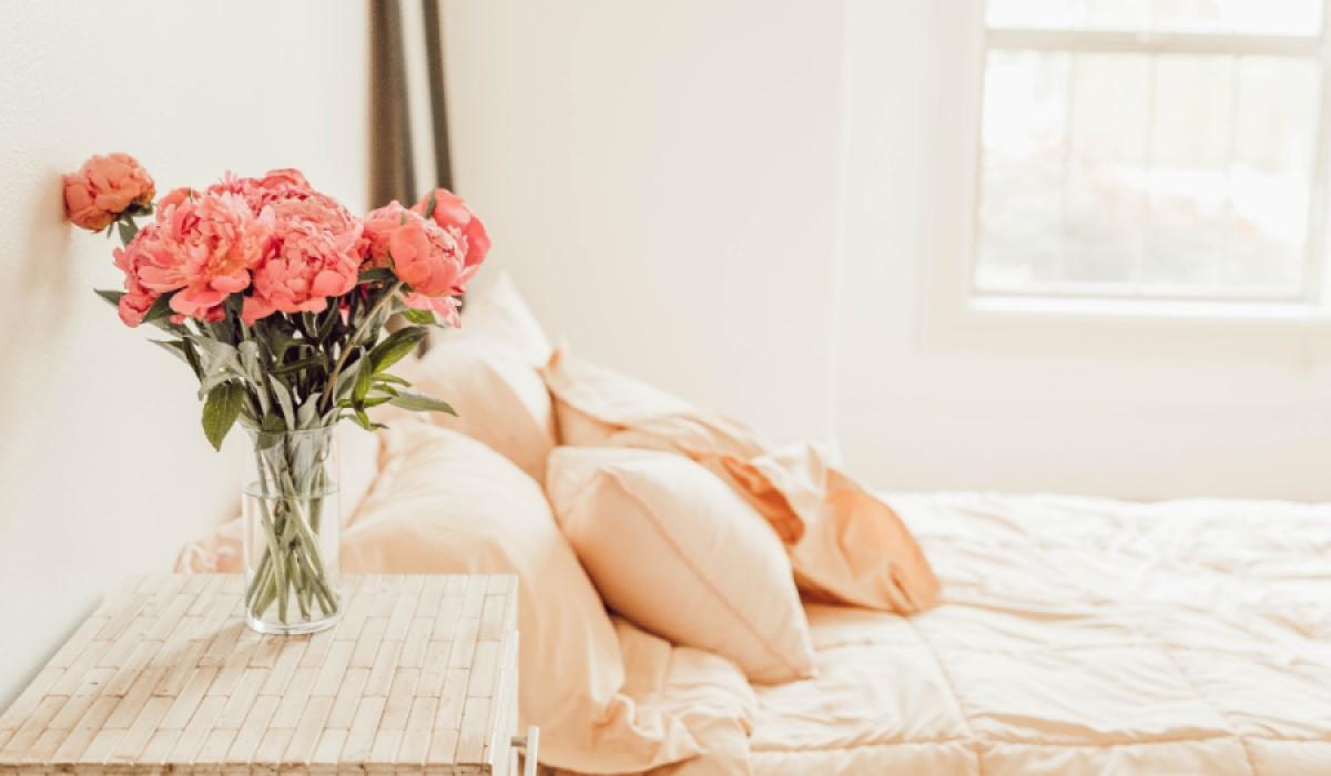 Pflanzen fürs Schlafzimmer: Stressfreier schlafen mit frischer Luft