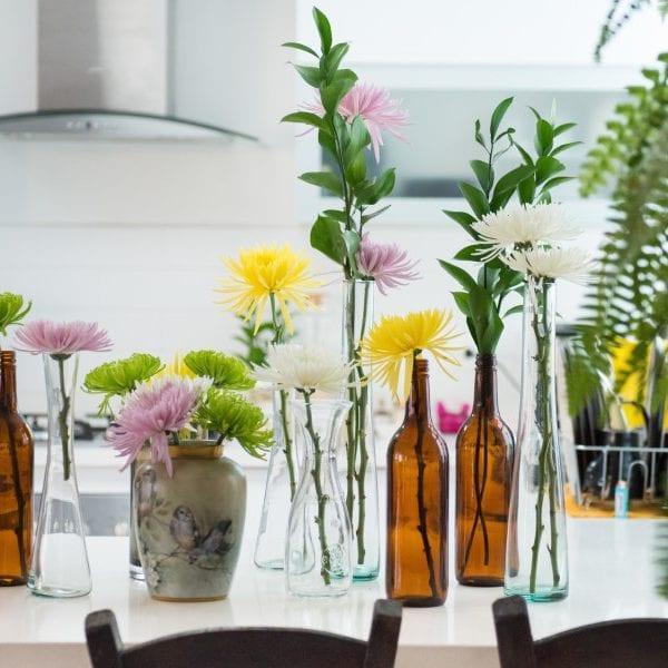 Pflanzen für die Küche